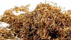 Nicotinevrije sigaret NIET nicotinevrij en gevaarlijker dan gewone sigaret of tabak