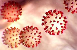 Verkoudheid antistoffen bieden geen verdediging tegen covid19